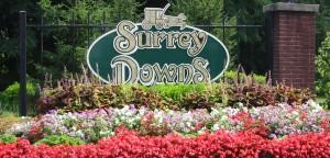 SurreyDownSign
